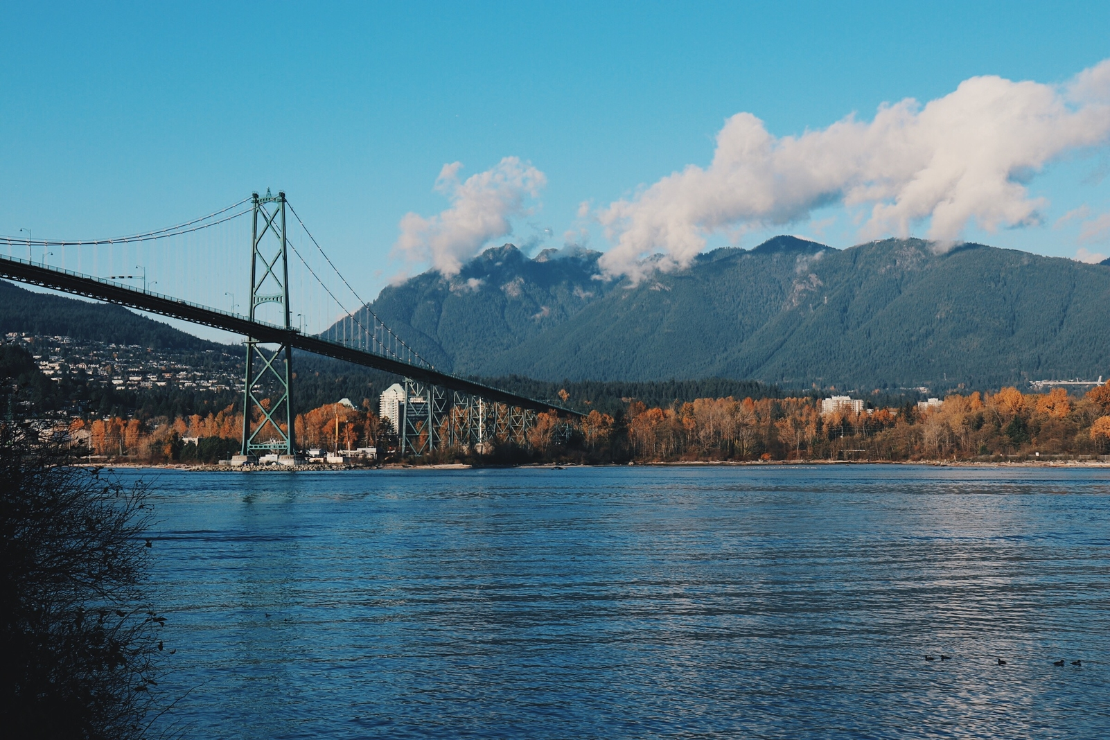 Here's a 2019 guide to exploring Vancouver's hottest spots