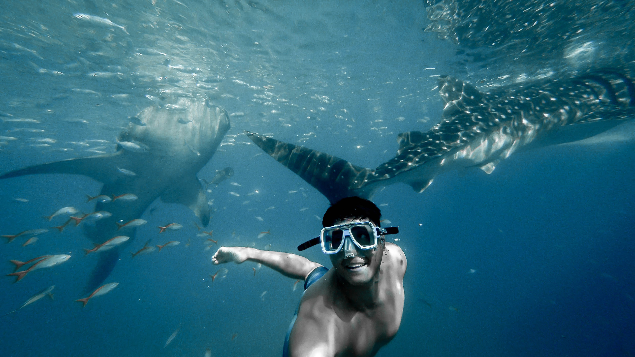 5 snorkelling destinations you need to visit in 2019