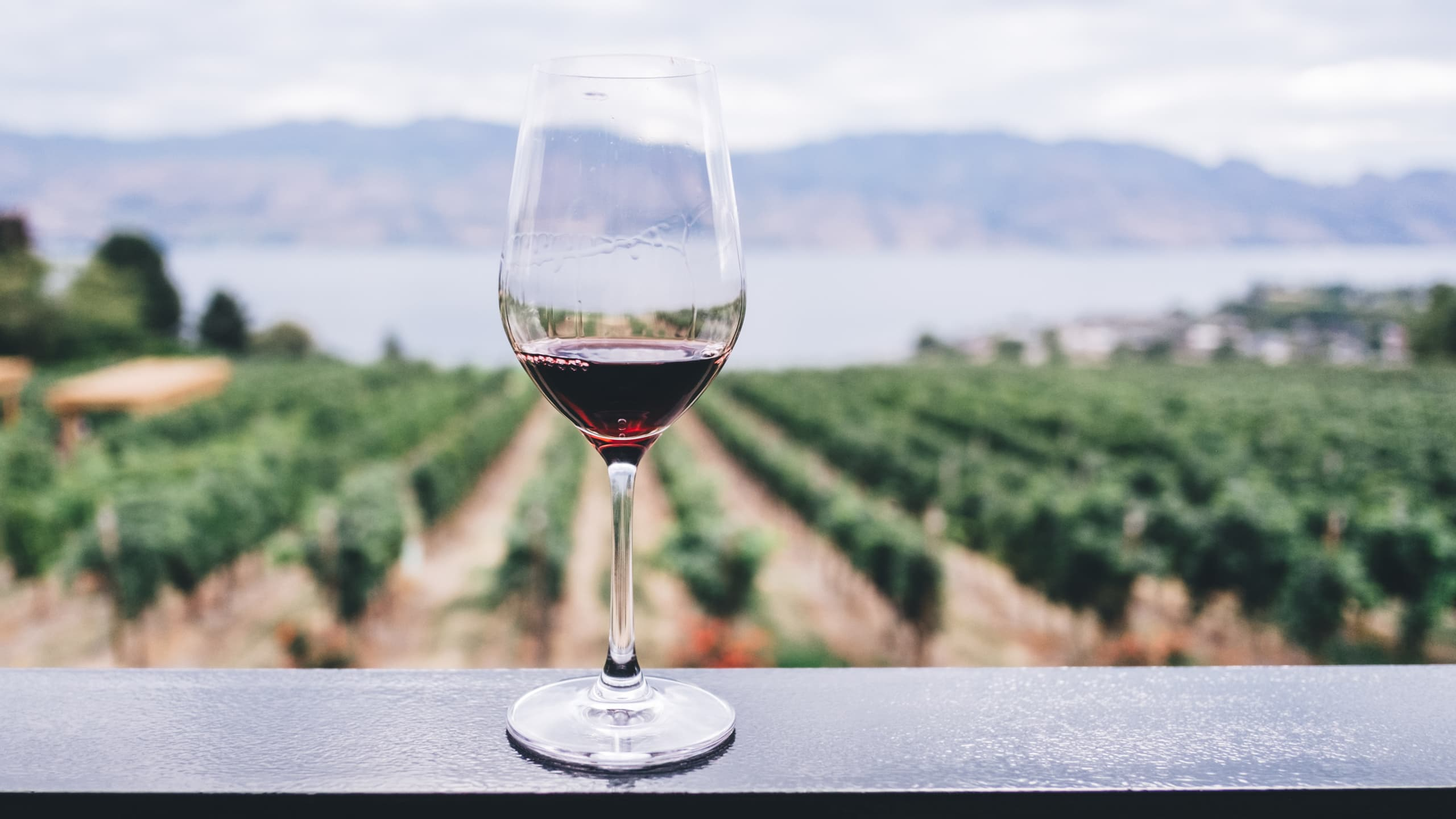 5 wine regions to visit that are not in France